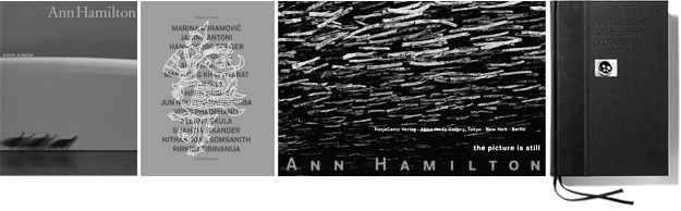 Ann Hamilton - publications